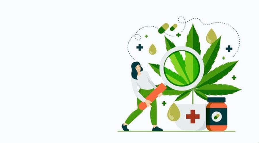 spectos socioculturales y productivos del cannabis para la salud