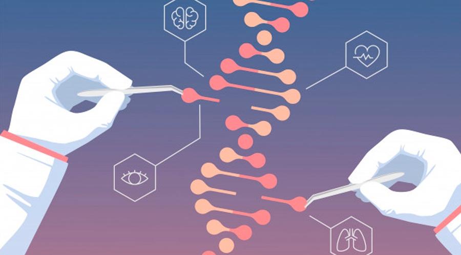 Seminario de ingeniería genética